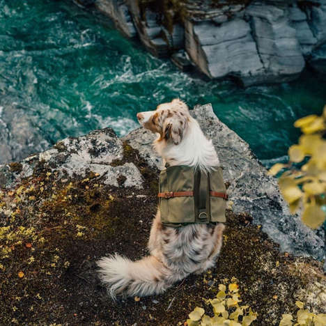 Canine Hiking Backpacks