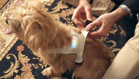 Emotive Canine Wearables