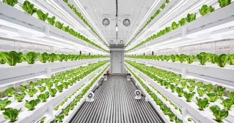 Vertical Smart City Farms