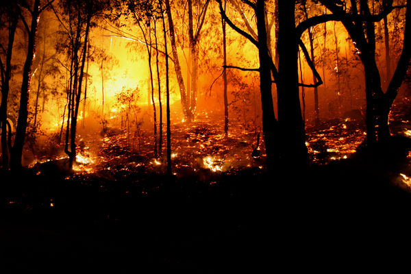 Branded Climate Emergencies Funds