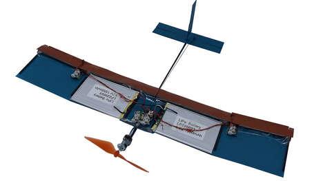 Bird-Like Drone Wings