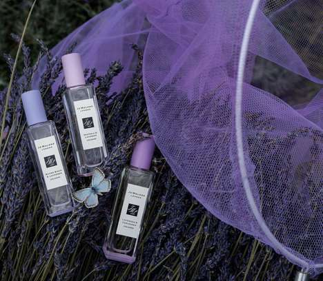 Unusual Lavender Fragrances