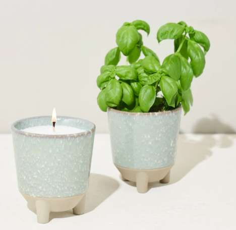 Candle-Transforming Herb Gardens