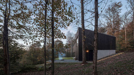 Double-Height Architect's Retreat Homes