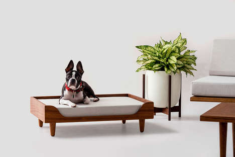 Ultra-Slick Modern Pet Beds