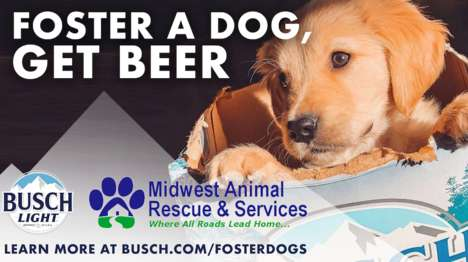 Beer-Branded Dog Fostering Ads