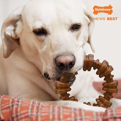 Oral Health-Supporting Dog Chews