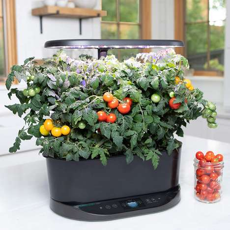 Voice Assistant Hydroponic Gardens
