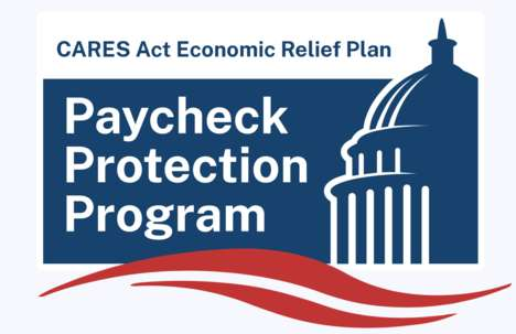Fintech-Supported Paycheck Protection Programs