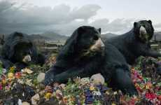 Hyper Defined Animals - 'Until Kingdom Comes' Digital Photo Creations by Simen Johan