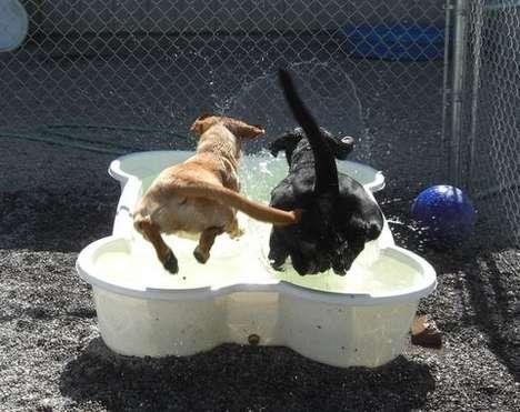 Splash Pools for Dogs