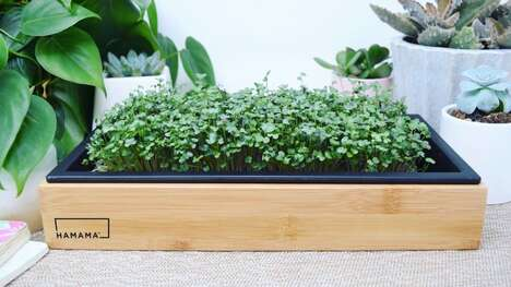Ultra-Simple Microgreens Gardens
