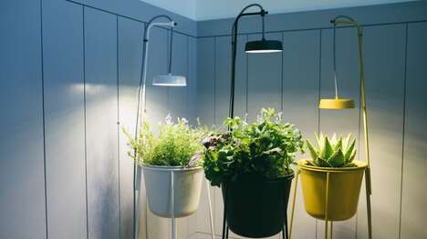 Biophilic Design Plant Holders
