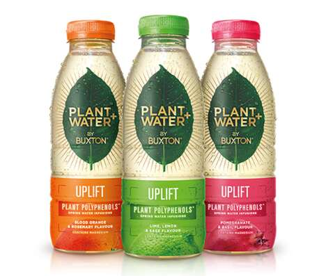 Micronutrient-Infused Water Drinks