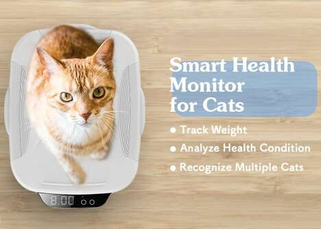 Health-Tracking Feline Scales