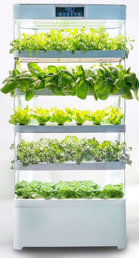 Family-Sized Indoor Gardens