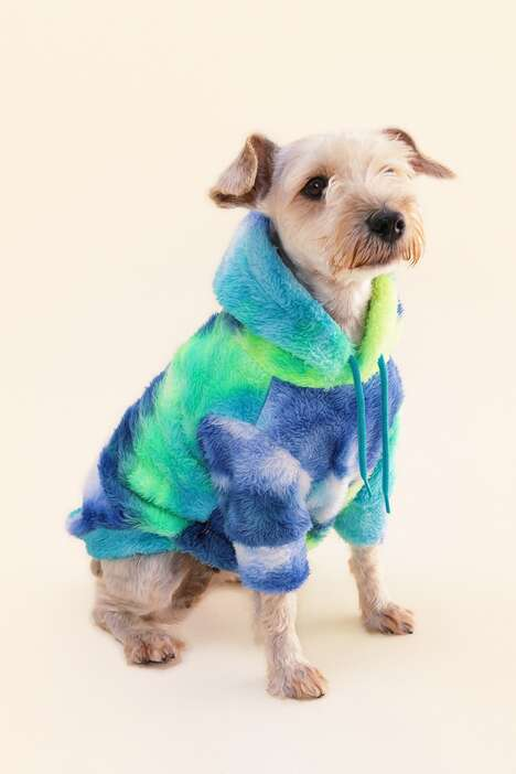 Stylish Dog Fall Fashion