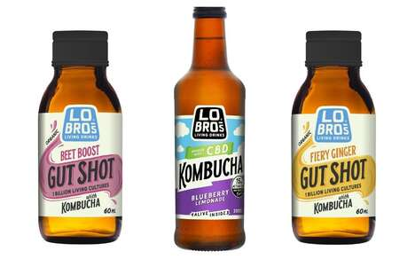 Health-Focused Kombucha Products