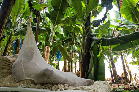 Climate Change Cocoons