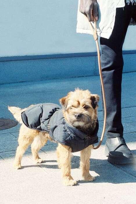 Inclusive Minimal Puffer Jackets