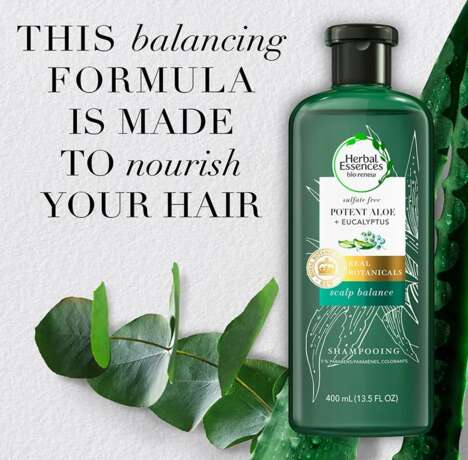 Sulfate-Free Aloe Hair Lines