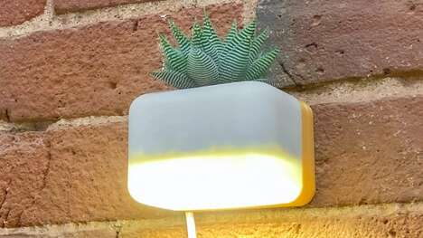 Soothing Succulent-Holding Lights