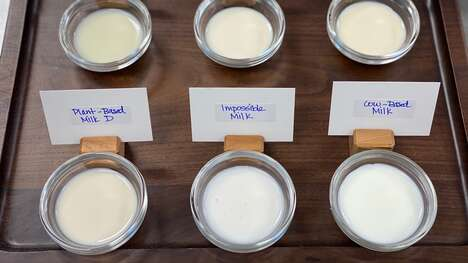 Dairy-Mimicking Milk Alternatives