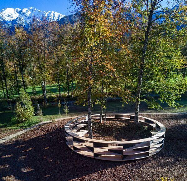 Tree-Based Art Installations