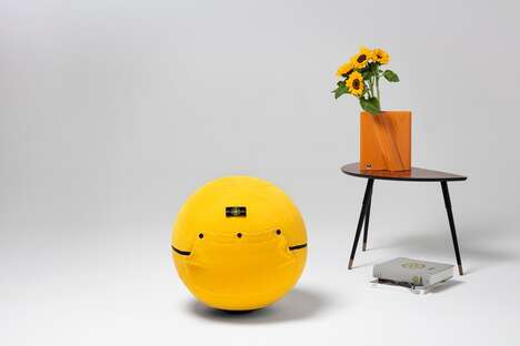 Fashion-Covered Exercise Balls