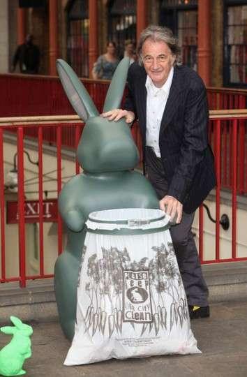 Rabbit Rubbish Bins
