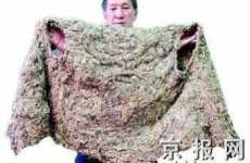 Creepy Cobweb Clothes - Zheng Xianwen Creates Shawls Made of Spider Webs
