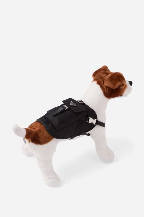 Edgy Designer Dog Jackets