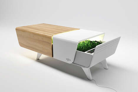 Garden-Equipped Coffee Tables