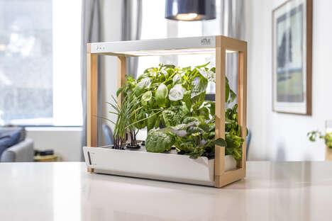 Smart Countertop Gardens