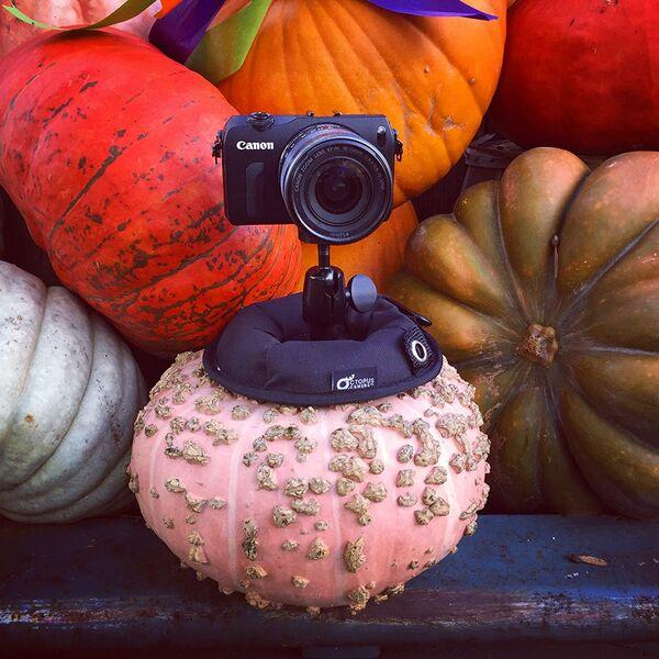 Sturdy Universal Camera Stands