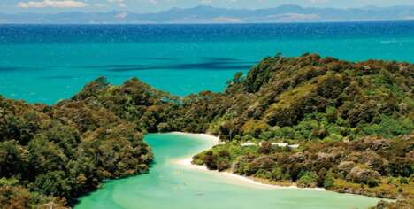 Local-Guided New Zealand Island Tours