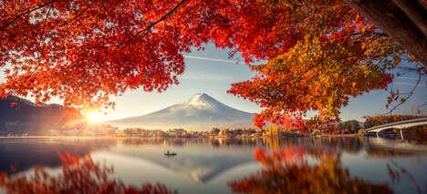 Japanese Moderate Adventure Tours