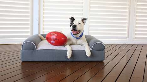 Massage Therapy Dog Beds