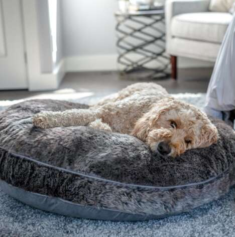 High-Quality Supportive Dog Beds