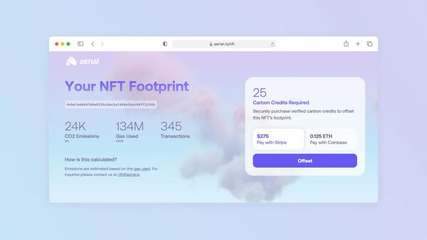 NFT Offset Initiatives