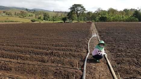 Regenerative Farming Initiatives