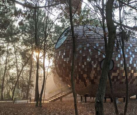 Immersive Seed-Shaped Cabins