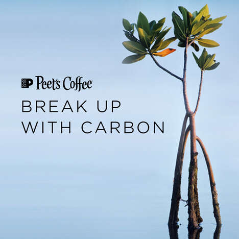 Carbon-Neutral Coffee Subscriptions