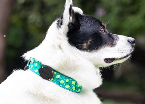 Aftermarket Tracker Pet Collars