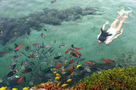 Massive Hotel Aquariums