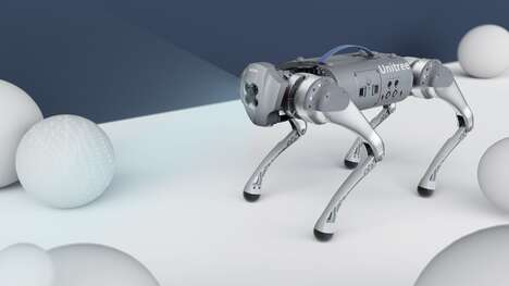 Dog-Like Robot Companions