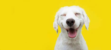 Branded Dog Appreciation Contests