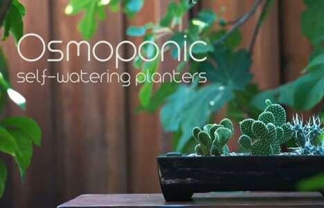 Ceramic Self-Watering Planters