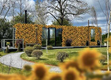 Tranquil Sunflower Hotels