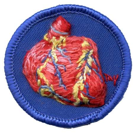 Embroidered Anatomies